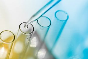 Food safety bacteria testing