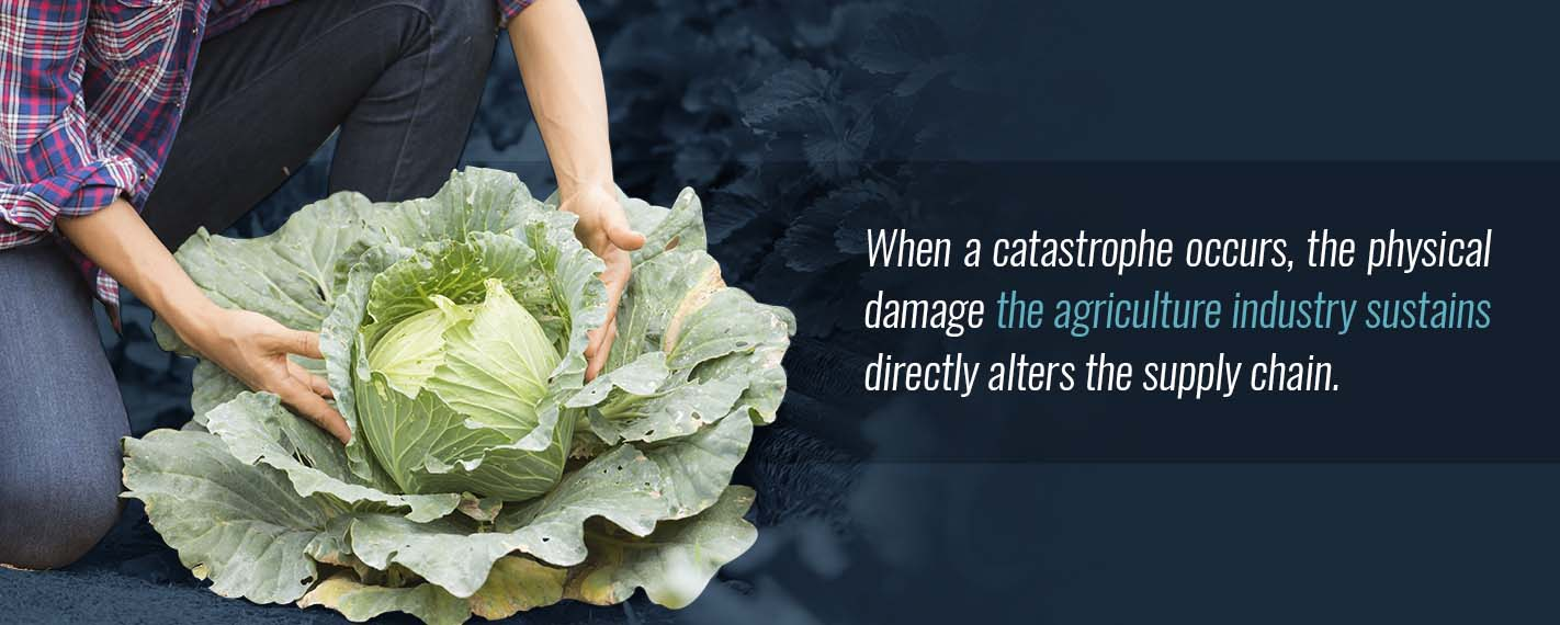 Natural Disasters Impact on Food Production
